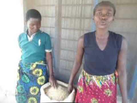 Women Rice Group in Karonga Malawi