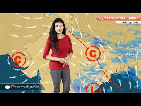Weather Forecast for Sep 12: Monsoon rains continue in Hyderabad, Chennai, Bihar and Jharkhand