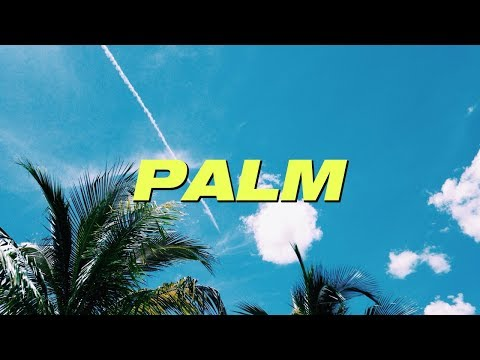 ASSET X NAP THE KID X ATEE - 'PALM'