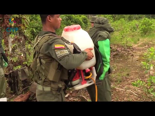 ¿El conflicto armado provocó daños al uso del territorio?