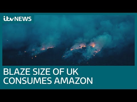 Area the size of the UK ablaze in Amazon as forest fires soar | ITV News