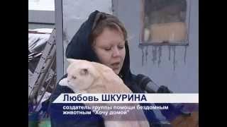 Общественная группа «Хочу домой»