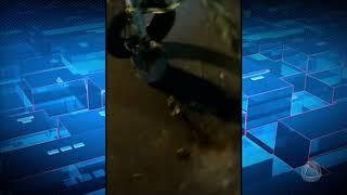 Vídeo repórter - 12/01/18 - Cidade Alerta