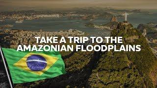 See it to Believe it | Brazil