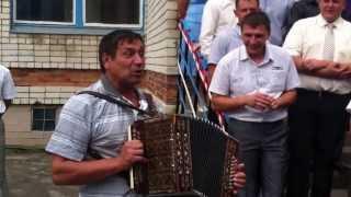 Гармонист отжигает на свадьбе (поет частушки)