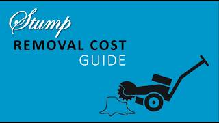 Tree stump removal cost guide