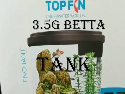 SETTING UP A BETTA FISH TANK 2017