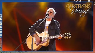 Yusuf / Cat Stevens - Peace Train (Viña Del Mar Festival, Chile 2015)