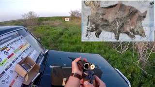 Тест пулевых патронов