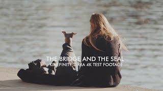 The Bridge & The Seal: Kinefinity Terra 4K test footage