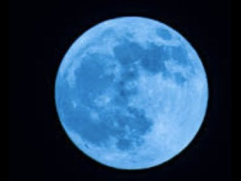 "Prophecy ""Super Blue Blood Moon"" Mark Biltz Reveals"" LIVE"