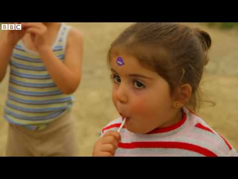 MSF conducts emergency migrant vaccinations in Greece   BBC News