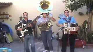 Los ALegres Del Barranco - 20 Años Con Tuba 2/19