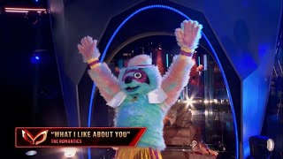 """Sloth Dances To """"What I Like About You"""" By The Romantics 