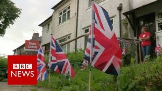 How political changes in UK & US might impact Europe in 2017   BBC News