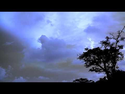 Costa Rica - Sounds of night, Howler Monkeys Crossing!