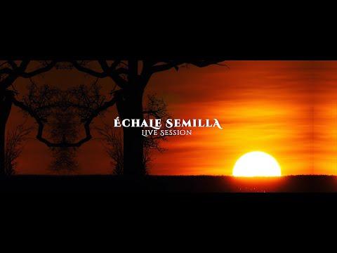 Échale semilla [Live Session] Mauricio Amauta Feat. Sebastian Chávez