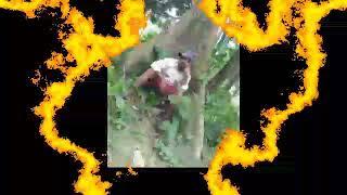 Manpaur Uma Shankar Tere Naam song Tumse Milna Baatein Karna B…