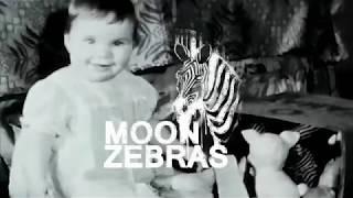 Moon Zebras - Simple Man (live)