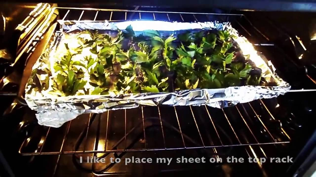 How To Easily And Quickly Dry Herbs Parsley