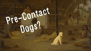 What Happened to the Pre-Contact Dogs?