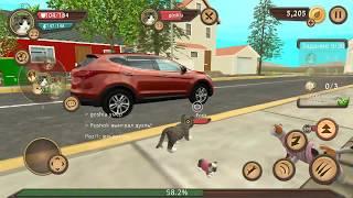 СИМУЛЯТОР Маленького КОТЕНКА #16 /cat simulator online