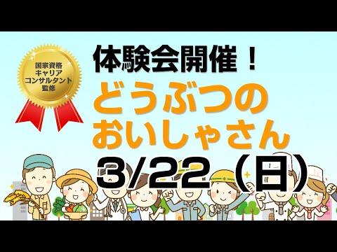 ビズキッズ体験会「どうぶつのおいしゃさん」3月22日に開催