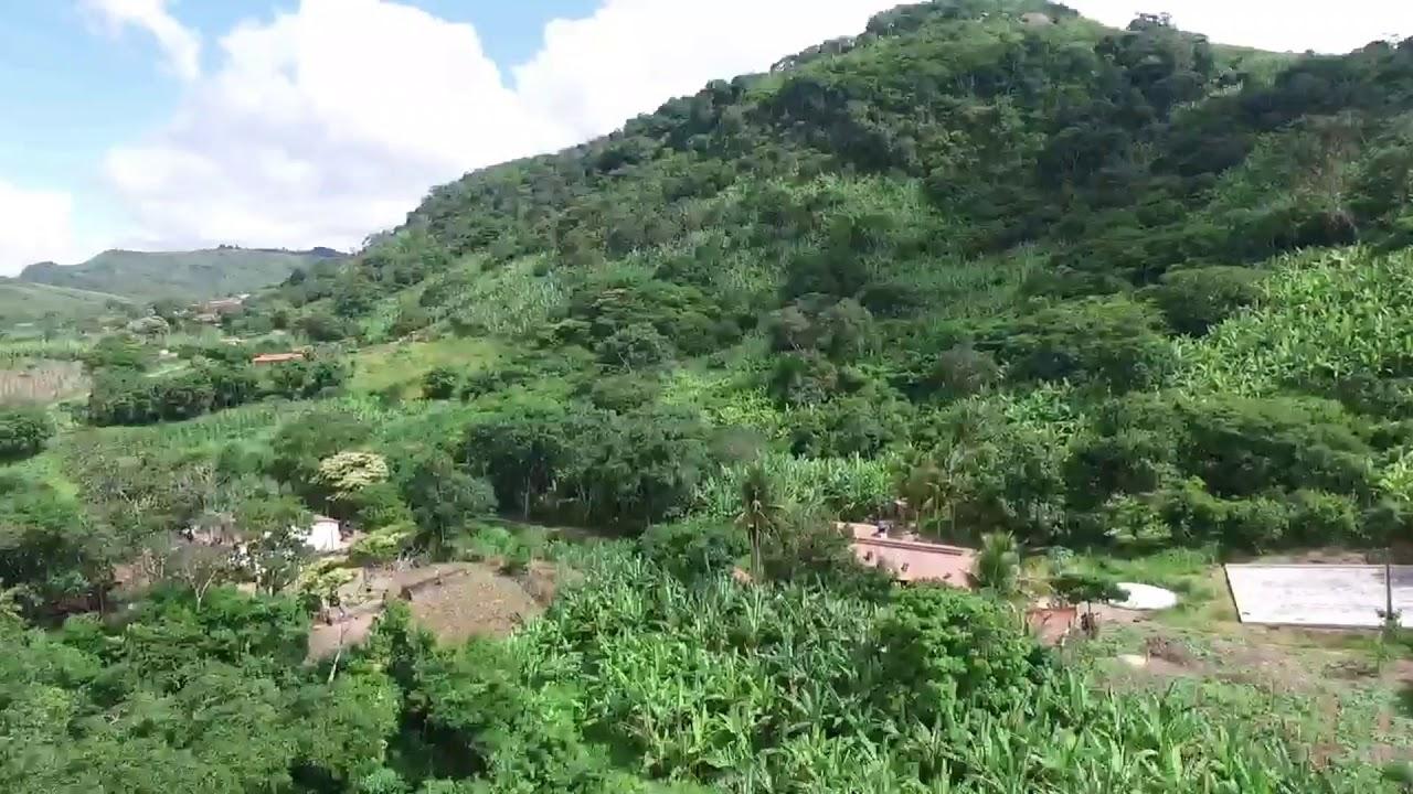 Palmácia Ceará fonte: i.ytimg.com