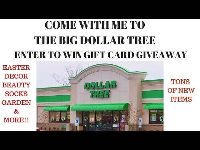 Tons of NEW ITEMS! Come with me to Dollar Tree