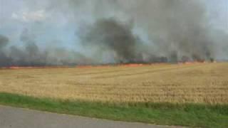 Naturbrand Mark, Høstet 8 8 09