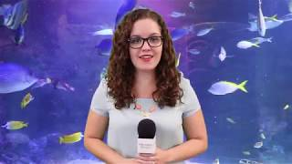 Orlando Health News Review, Episode 235