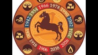 Лошадь. Таро прогноз на год Петуха 2017 для родившихся в год Лошади