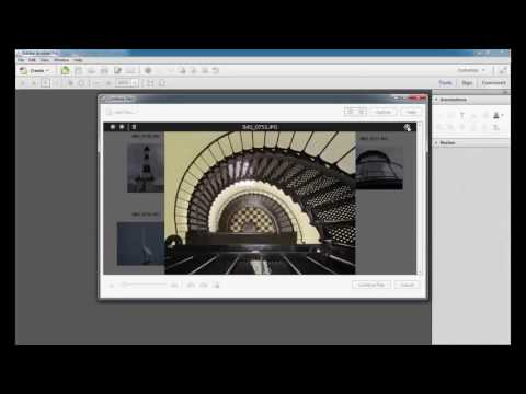 Adobe & Graphic / Adobe Acrobat XI Pro Tutorial