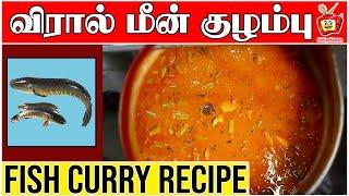 மீன் குழம்பு மிக சுவையாக செய்வது எப்படி | MEEN KULAMBU | Viral Meen Kulambu | Murrel Fish