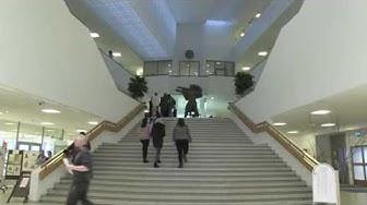 Tamlun esittelyvideo