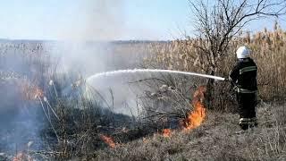 Рятувальники Миколаївщини ліквідували пожежу очерету на відкритій території