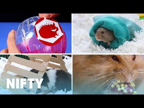 Cute And Cuddly DIY Projects For Your Hamster