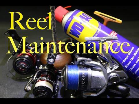 Fishing Reel Maintenance After Fishing. Land And Bay Fishing