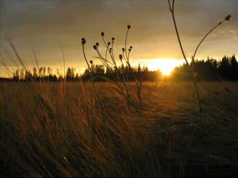 Emi Fujita - Fields Of Gold (lyrics)