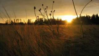 Emi Fujita - Fields Of Gold (lyrics)