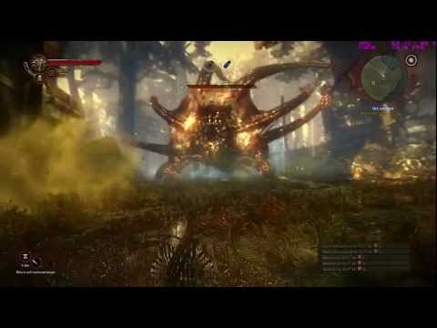 The Witcher 2: Defeating Kayran (GTX 460)