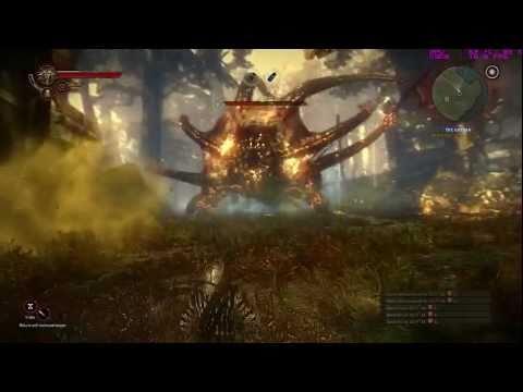 The Witcher 2: Defeating Kayran (GTX 460)