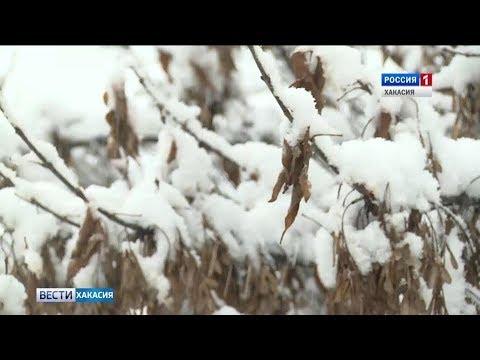 Погода в Хакасии резко ухудшится. 22.10.2018