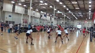Lauren Hubbard vb clips
