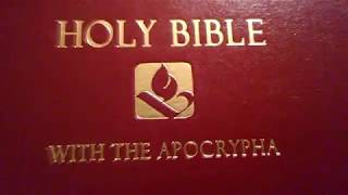Gambar cover The Holy Bible NRSV With Apocrypha REVIEW