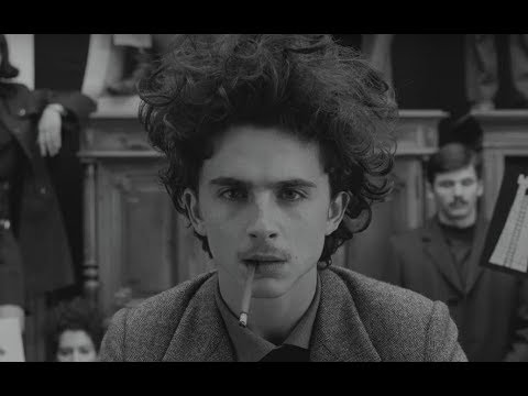 Why Wes Anderson Cast Timothe Chalamet: He Belongs in the ...