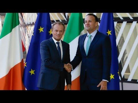 European Council President Donald Tusk and the Irish Taioseach Leo Varadkar hold a press conference