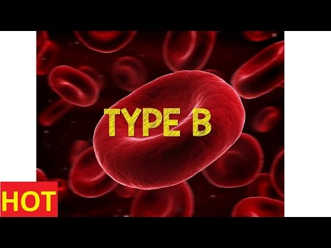 Blood Type ABO and Rh Made Simple Discovery Channel Documentary National Geographic New Full