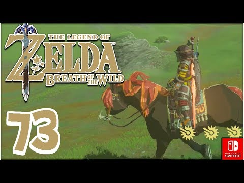 Breath of the Wild: NEW MANE NEW HORSE - PART 73 - ChaoticShadow24