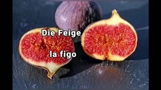 Germana leciono fruktoj
